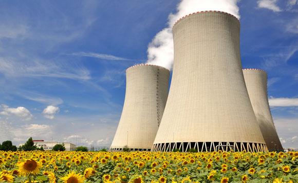 nuclearplantdaisies580 1