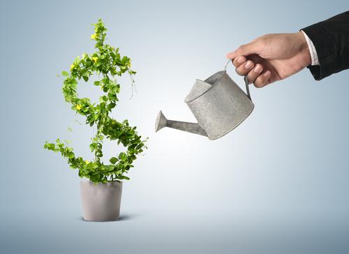 grow-income