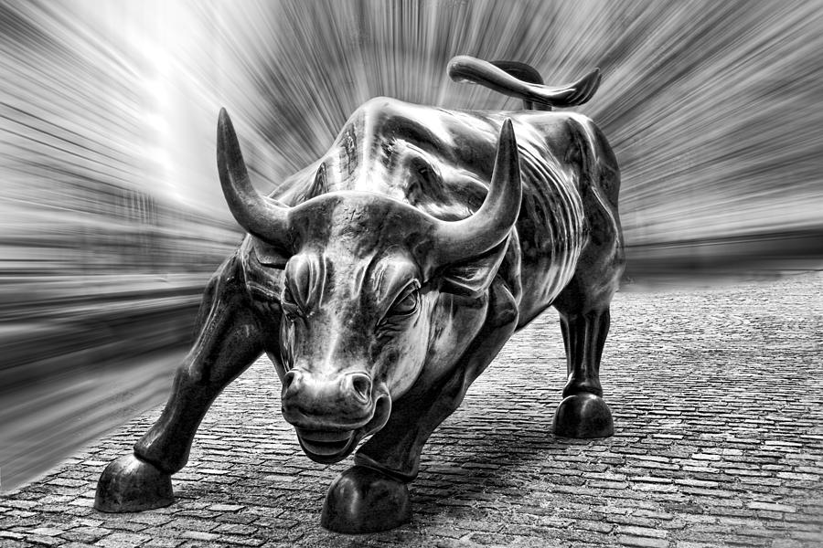 wall-street-bull-black-and-white-d0004-wes-and-dotty-weber