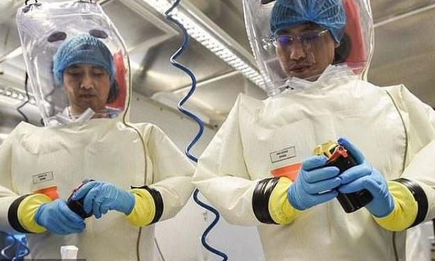 Pandemic Perception vs Reality